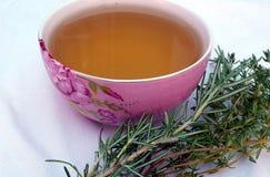 Rozmaryny i tymiankowa zielarska herbata na stole Obrazy Royalty Free