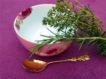 Rozmaryny i tymiankowa zielarska herbata na stole Obraz Stock