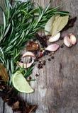 Rozmaryny, wapno, chili pieprz, czosnek, suche pieczarki na drewnianym tle fotografia royalty free