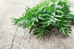 Rozmaryny zasadzają na drewnianym wieśniaka stole, świezi organicznie ziele zdjęcie stock