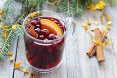 Rozmyślający wino z cynamonem i pomarańcze, cranberries Obraz Stock