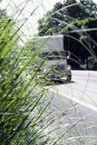 Rozmyta ciężarówka na drogi pudełka przyczepy zielonej trawie Semi Obrazy Stock