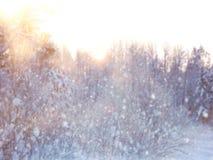 Rozmyta i abstrakcjonistyczna magiczna zima krajobrazu fotografia błyskotliwości narzuta Zdjęcie Stock