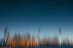 Rozmyty las przy zmierzchem Fotografia Stock
