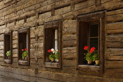 Roznov pod Radhostem, Czech Republic. Flower on the window of an very old wooden cottage (Roznov pod Radhostem, Czech Republic royalty free stock photos