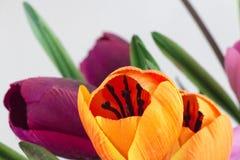 Rozochoceni i pokojowi sztuczni kwiaty różnorodni kolory wewnątrz lub Fotografia Stock