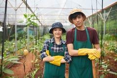Rozochoceni młodzi robotnicy rolni zdjęcia royalty free