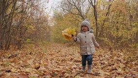 Rozochocona chłopiec biega energetically wzdłuż jesień parka pas ruchu zdjęcie wideo