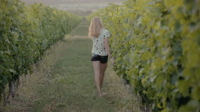 Rozochocona dziewczyna chodzi między rzędami winogrady w zbiory