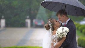 Rozochocona elegancka para małżeńska właśnie delikatnie ściska pod parasolem w deszczu połowa długości portret zdjęcie wideo