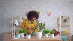 Rozochocona i pozytywna amerykanin afryka?skiego pochodzenia kobieta bierze opiek? kwiaty i ro?liny w nowo?ytnych mieszkaniach zdjęcie wideo