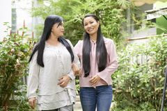 Rozochocone etniczne pokoleniowe kobiety zdjęcie royalty free
