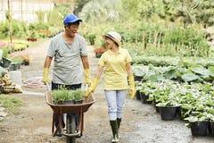 Rozochocone ogrodniczki z wheelbarrow zdjęcia stock