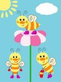 Rozochocone pszczoły Zdjęcia Stock