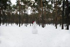 Rozochocony bałwan w Święty Mikołaj kapeluszu na parku przeciw półdupkom Obrazy Stock