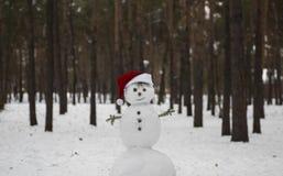 Rozochocony bałwan w kapeluszu Święty Mikołaj na zamazanym tle Zdjęcia Stock