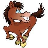 Rozochocony koń Fotografia Royalty Free