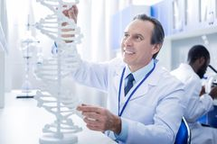 Rozochocony męski genetyk patrzeje DNA modela obraz royalty free