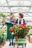 Rozochocony pracownik opowiada z pięknym klientem w nowożytnym kwiatu sklepie zdjęcia royalty free