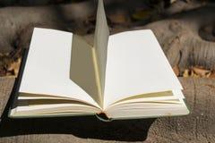Rozpieczętowana książka w jesieni Fotografia Stock