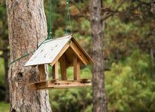 Rozpieczętowany birdhouse wspinający się na drzewie Zdjęcie Stock