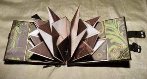 Rozpieczętowany przyglądający photoalbum z zieleni bronse i pokrywy przepięciami, ogólny widok Zdjęcie Stock