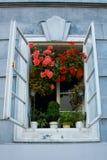 Rozpieczętowany stary nieociosany okno z różowymi kwiatami Obraz Stock