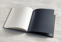 Rozpiecz?towana pusta broszura obrazy stock