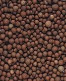 Rozprężony Gliniany agregat (R skały) Fotografia Royalty Free