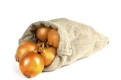 Rozprasza cebuli w torbie Fotografia Stock