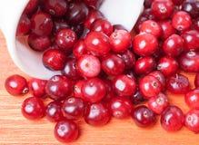 Rozpraszający od biel filiżanki zbliżenia cranberries Obrazy Royalty Free