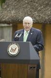 Rozpusta - Prezydent Dick Cheney Zdjęcie Stock