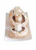 Rozrasta się szampinionu, Agaricus bisporus na białym talerzu, zakończenie Obraz Royalty Free