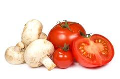rozrasta się pomidory Obrazy Stock