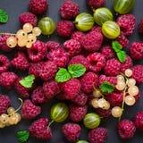 Rozrzucanie wyśmienicie jagody na czarnym tle Malinki, rodzynki i agresty, Obraz Stock