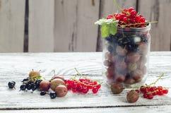 Rozrzucona mała organicznie owoc, czerwień, czarny rodzynek i agresty na drewnianym stole, Obrazy Stock