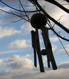 rozsądny wiatr Fotografia Royalty Free