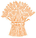 rozsypisk wheats Obraz Royalty Free