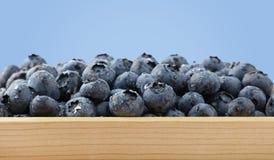 Rozsypisko świeże myć czarne jagody w drewnianym pudełku fotografia stock