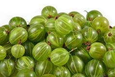 Rozsypisko świeży zielony agresta zakończenie up na bielu Zdjęcie Stock