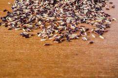 Rozsypisko brown ryż obrazy stock