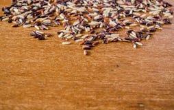 Rozsypisko brown ryż fotografia stock