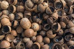 Rozsypisko brown stary suchy kokosowy ` s struga przy tropikalną wyspą zdjęcia stock