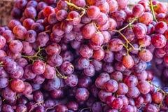 Rozsypisko czerwoni winogrona Obrazy Stock