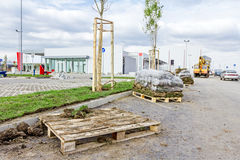 Rozsypisko darniuje rolki dla instalować nowego gazon, unrolling trawy Zdjęcie Stock