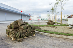 Rozsypisko darniuje rolki dla instalować nowego gazon, unrolling trawy Zdjęcia Stock