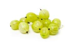 Rozsypisko dojrzała, świeża zbierająca zielona agrestowa owoc, Fotografia Stock