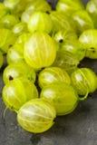 Rozsypisko dojrzała, świeża zbierająca zielona agrestowa owoc, Obraz Stock