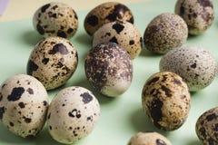 Rozsypisko przepi?rek jajka na koloru tle Jarski organicznie eco jedzenie fotografia stock
