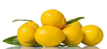 Rozsypisko wielkie żółte cytryny z liśćmi odizolowywającymi na bielu fotografia royalty free